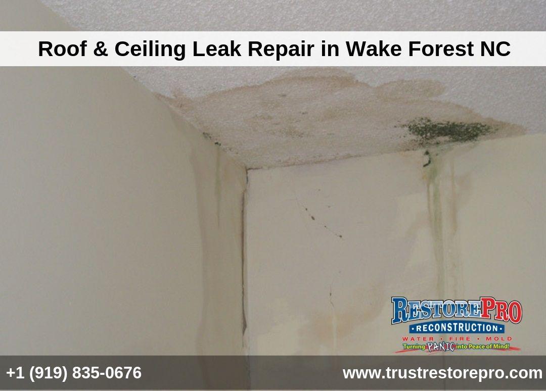Wake Forest Ceiling Leak Repair Water Damage Ceiling Leak Repair Leak Repair Ceiling Leak Water Damage