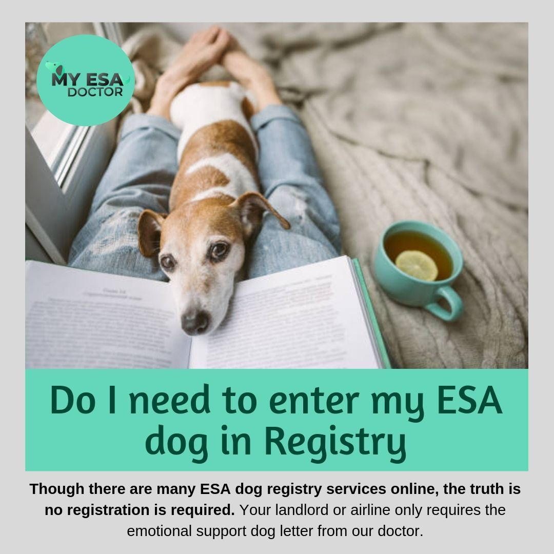 Though there are many ESA dog registry services online