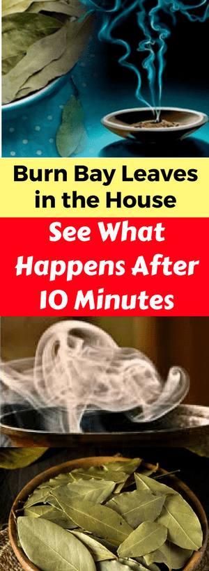 Burn Bay Leaves In The House & See What Happens After 10