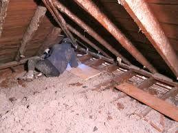 Attic Cleanup Insulation Removal Reseda Ca Attic Insulation Attic Ceiling Insulation Blown In Insulation