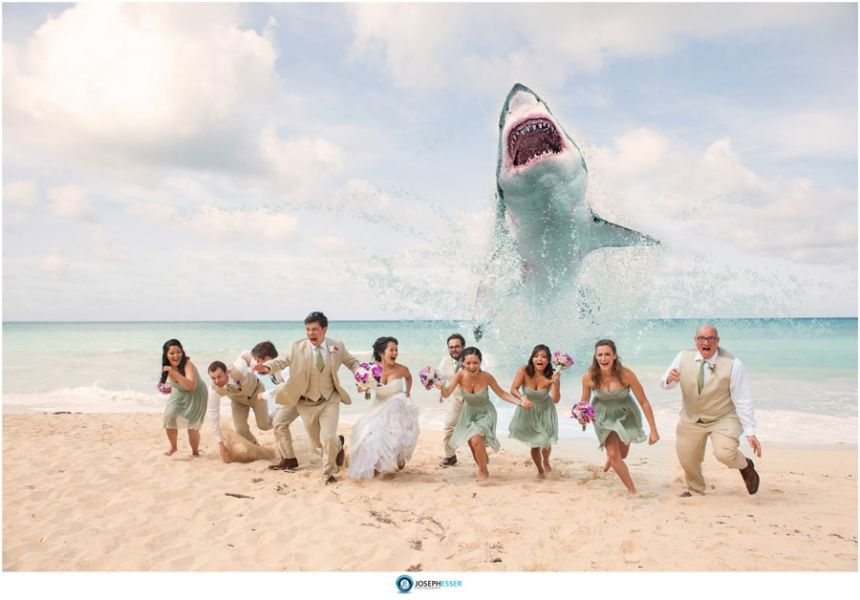 Funny Wedding Photo We Snapped In Honor Of Shark Week And Sharknado Bridal Party Being Chased By On Beach Hawaii