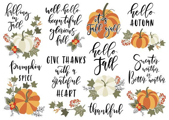 Autumn / fall / lettering / quote / clipart / pumpkin