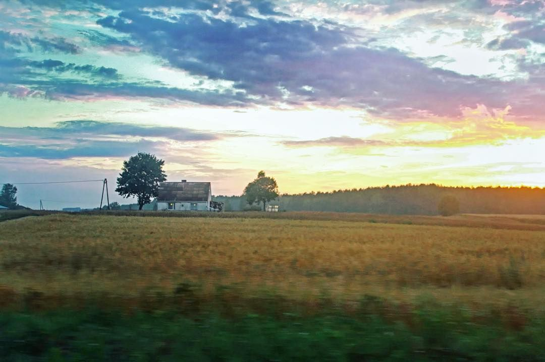 (126/365) Road trips are better with great sunsets. . . . #california #sunset #rural #idyllic #grass #farm #farmland #landscape #colorfulsunset #nature #amazinglandscape #project365 #project366 #photoaday #landscapelovers #poland #sunsetporn #sunset_stream #earthpix #travel #adventure #traveladventure #artofvisuals by naturalequality