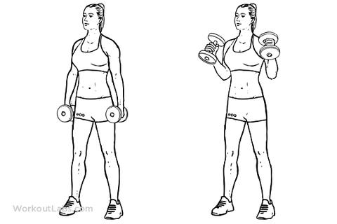 10 Tennis Elbow Exercises To Regain Your Championship Serve Elbow Exercises Tennis Elbow Tennis Elbow Exercises