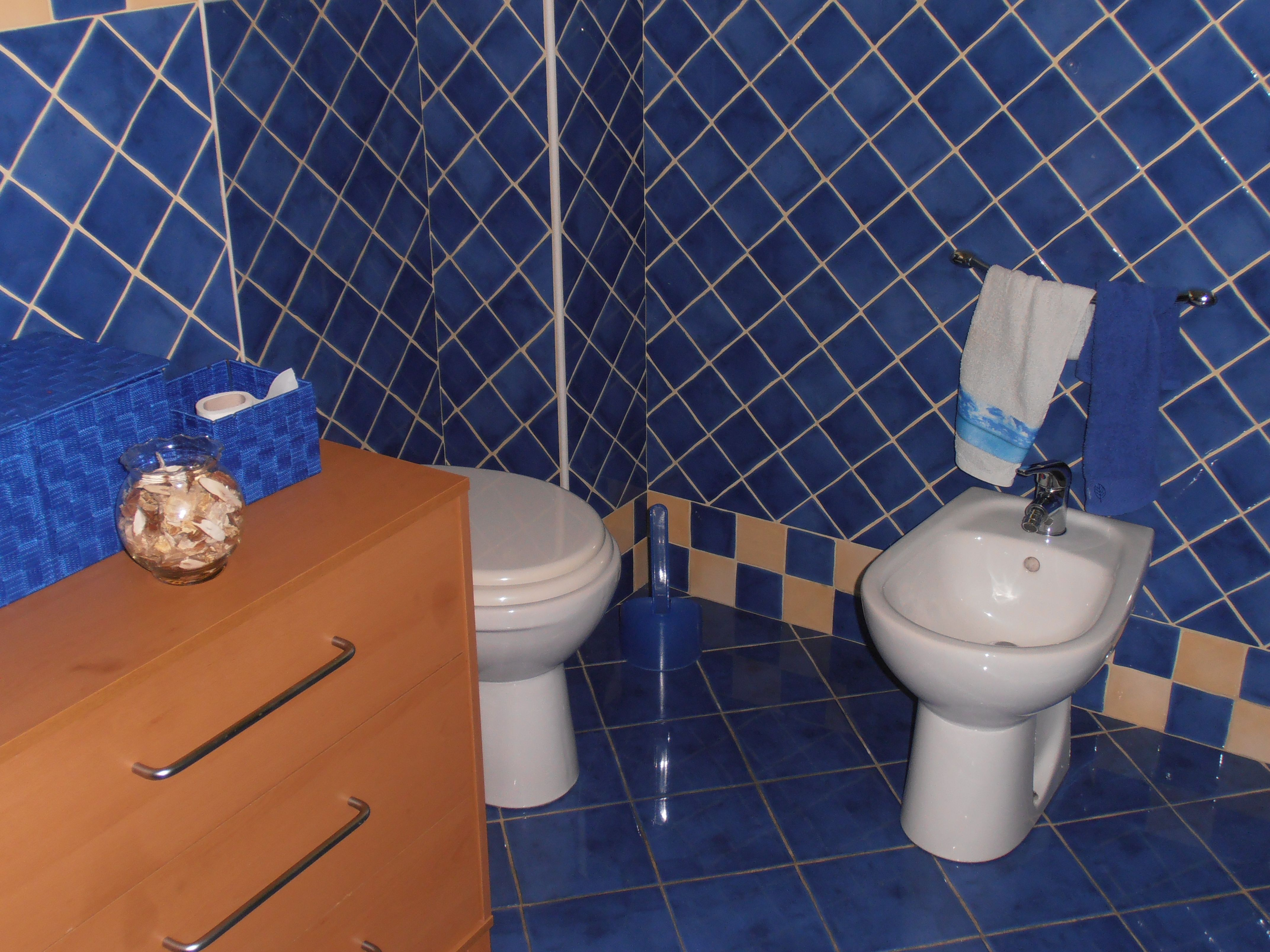 Il bagno è sttao interamente rifatto da pochi anni con delle