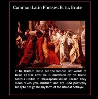 The Ferocious Patriot Expose Attention America Nothing Good Comes From A Government Who Hides It S Intent Julius Caesar The Secret Rhonda Byrne Latin Phrases