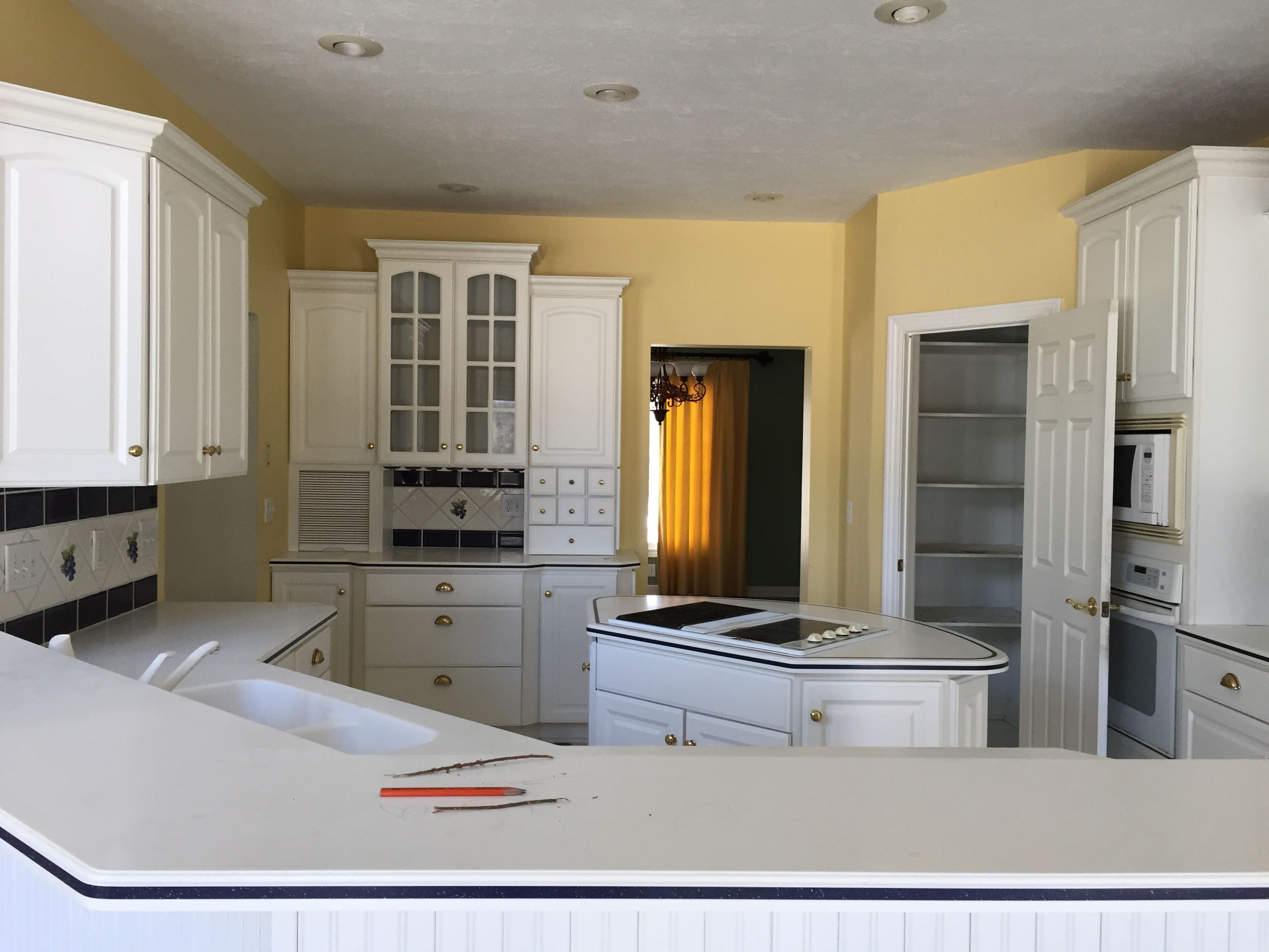 Cabinet Painting Cabinet Refinishing Services In Lansing Michigan Painting Kitchen Cabinets Kitchen Cabinets Cost Of Kitchen Cabinets