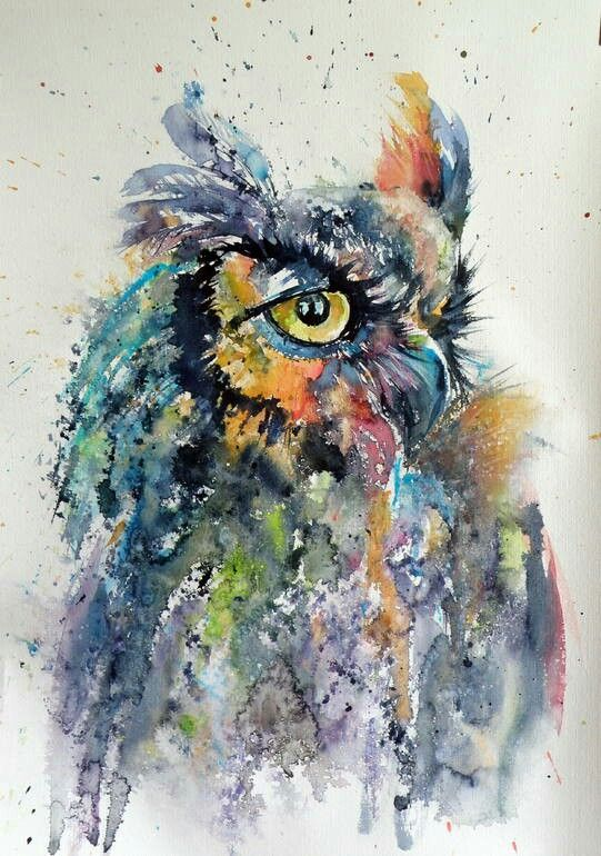 Owl Watercolor Owl Painting Owl Watercolor Art