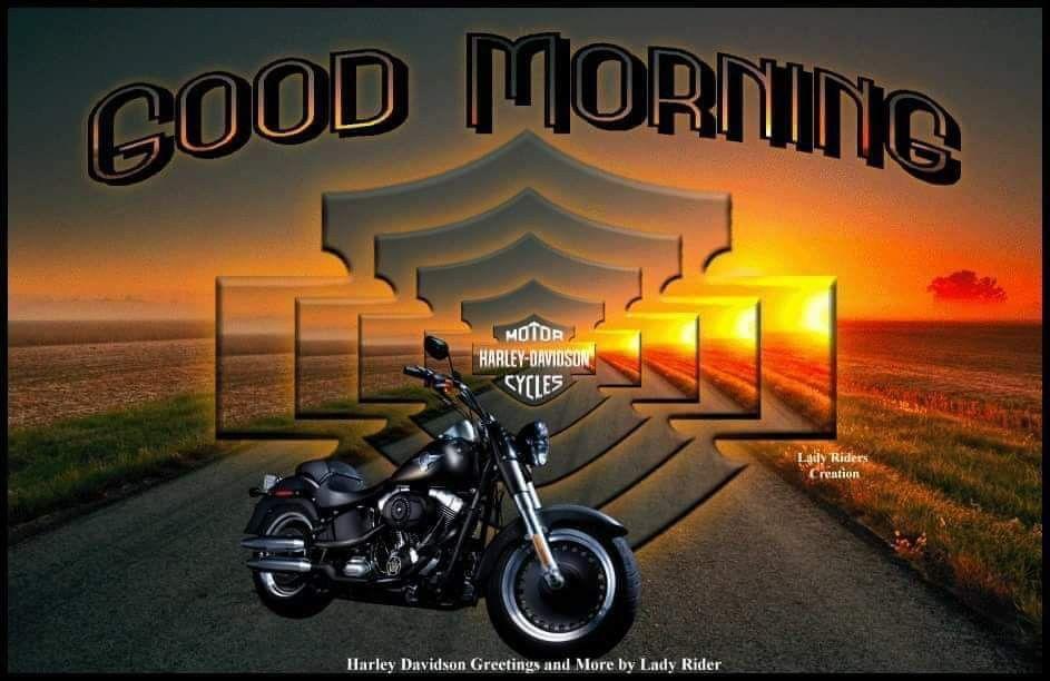 Pin By Berdie Creech On Biker Memes Harley Davidson Lady Riders Bike Pic