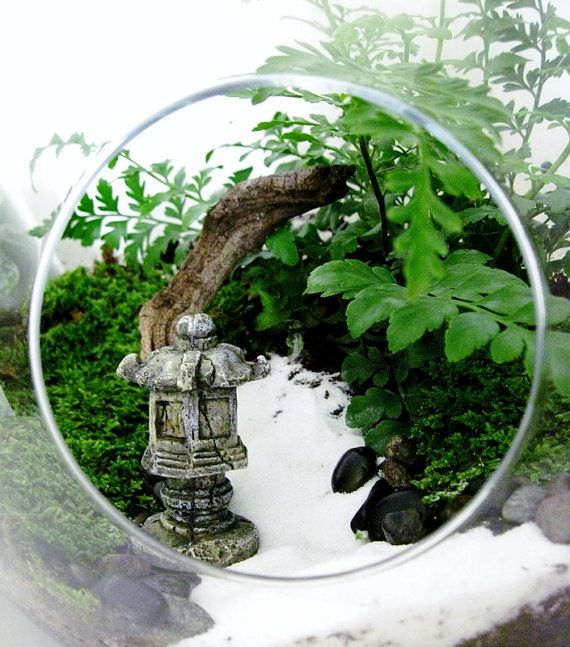 Terrarium Set: 2 Pear Shaped Glass Jars With Live Plants U0026 Miniature  Japanese Garden Pagoda   Extra Large Centerpiece