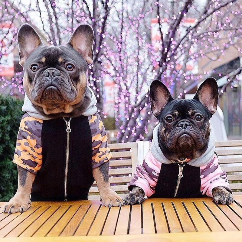 French Bulldog hoodie Frenchie Clothing Mustard