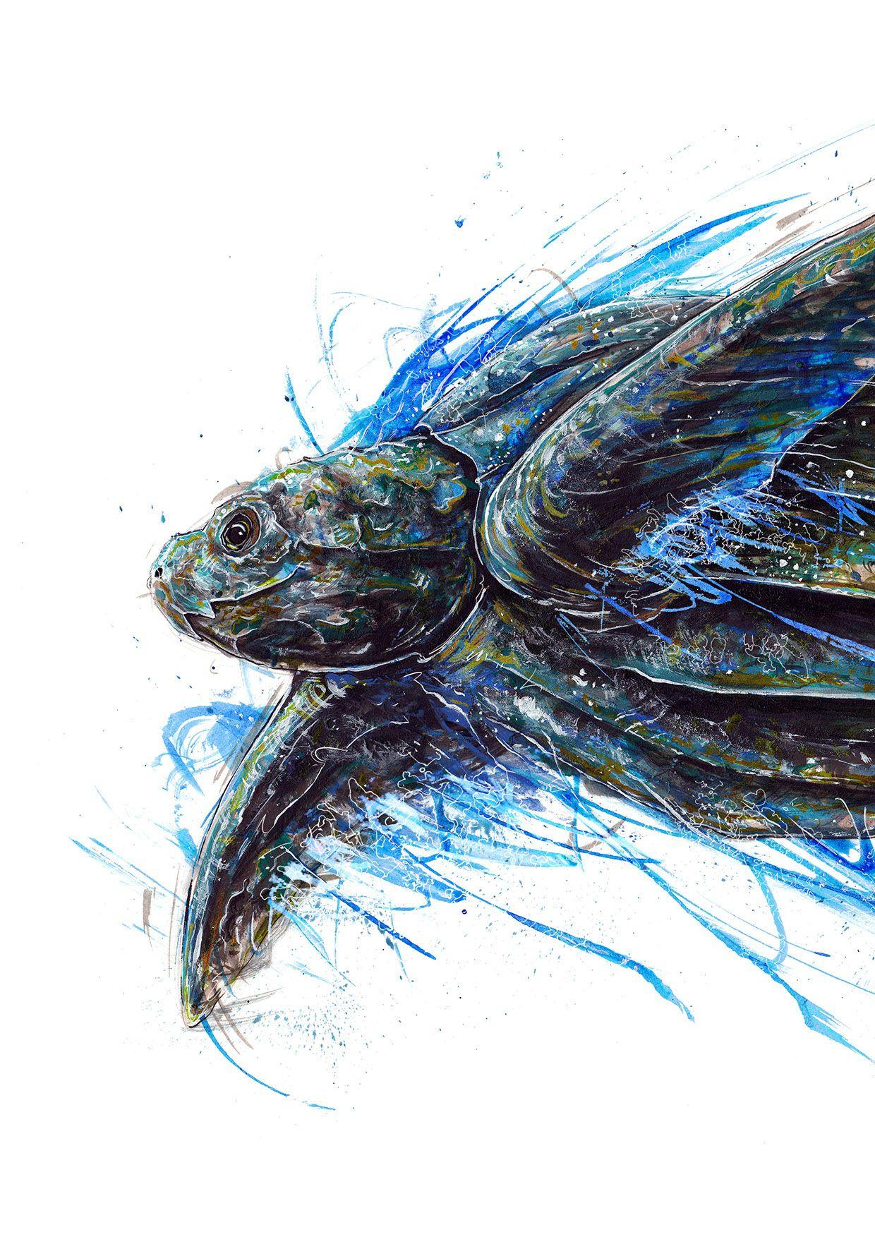 Tortuga Baula | colores | Pinterest | Tortuga, Color y Ilustraciones