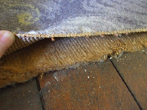 Best Of Asbestos Carpet Underlay Uk And Pics In 2020 Carpet Underlay Carpet Carpet Styles