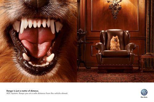 Volkswagen ACC System: Dog Ad