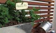 Casa GNT - Como fazer uma hortinha em casa   globo.tv
