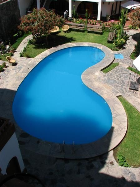Kidney shaped pool in the corner gardening pinterest for Images of kidney shaped pools