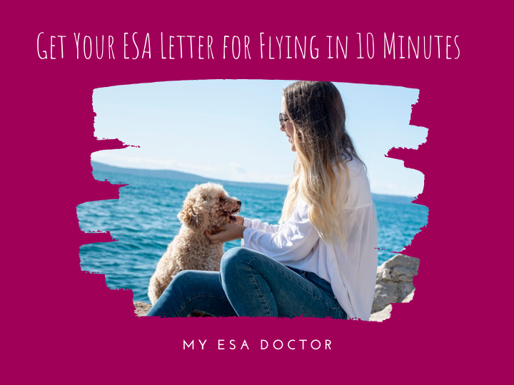 Interested in Flying with your Emotional Support Animal