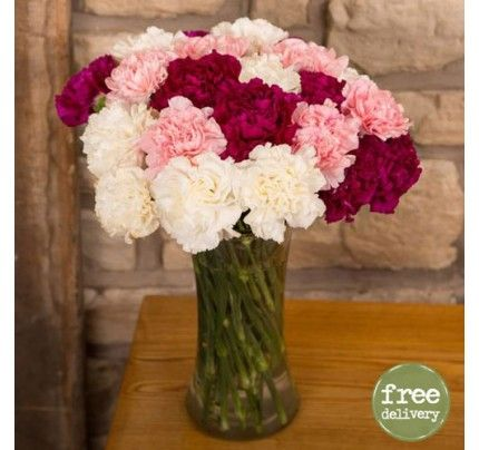 Buy Carnations Online Send Carnations Flower Gift To India Anniversary Flowers Carnations Wedding Gifts India