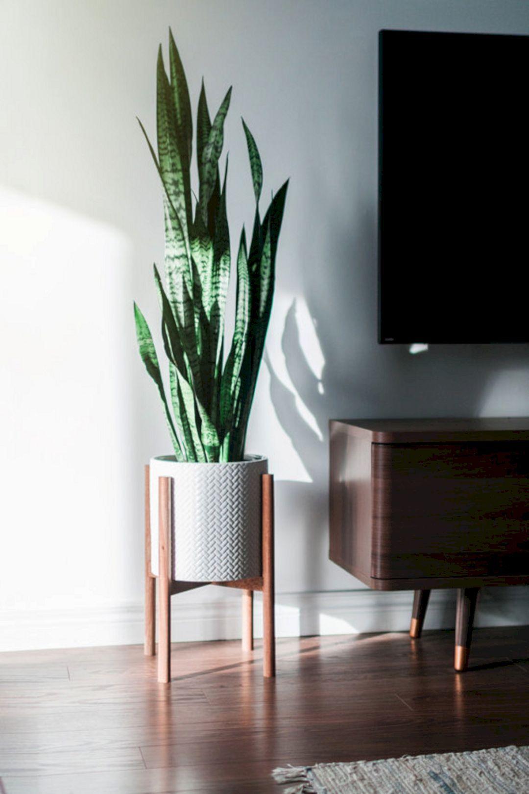 top ideas about mid century modern decor 65 pinterest plante interieur plantes et chambres. Black Bedroom Furniture Sets. Home Design Ideas