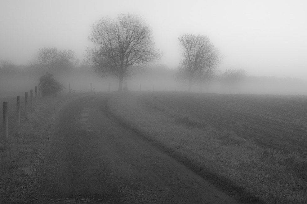 Foggy morning outside Columbus | 27 Photos That Prove Ohio Is Actually The Most Gorgeous State