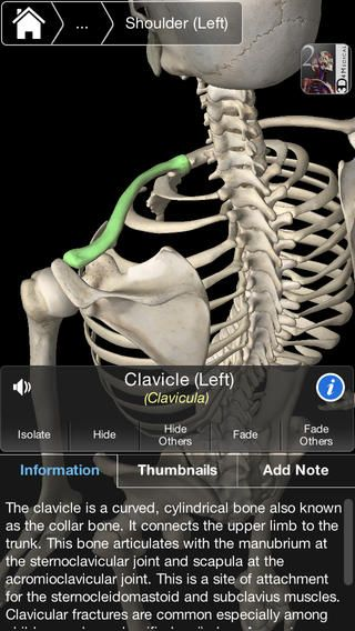 This FREE app covers the essential anatomy of the skeleton. It ...