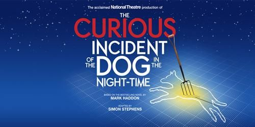 The Curious Incident Of The Dog In The Night Night Time Curious