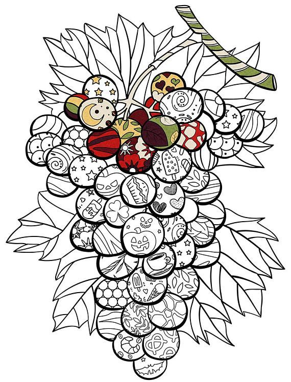 Bunch Of Grapes PDF Zentagle Coloring Page Adult