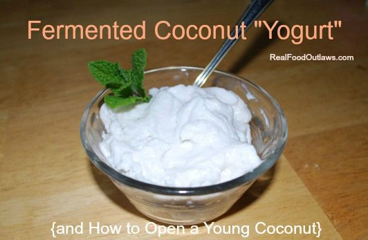 "Fermented Coconut ""Yogurt"" and How to Open a Young Coconut"