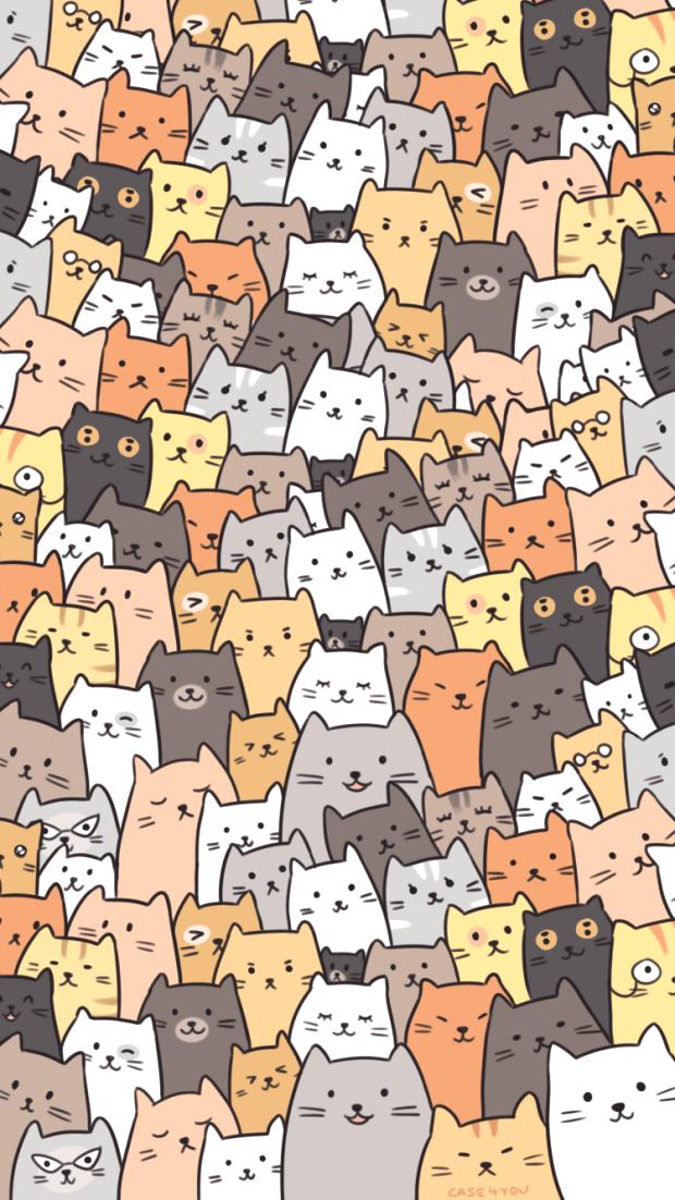 Wallpaper Cats Fondos De Pantalla De Gatos Empapelado De Gato