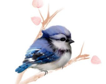 Items Similar To Bird Prints Baby Bird Art Baby Robin Bird