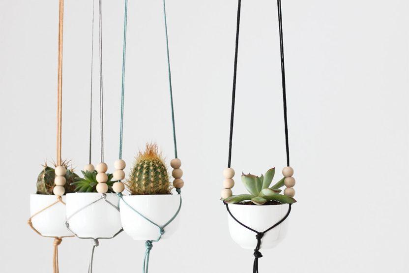 Wine and Macramé Plant Hangers - skinnyskinny | Houseplants, Gardening, Urban Gardening, Design, Weaving
