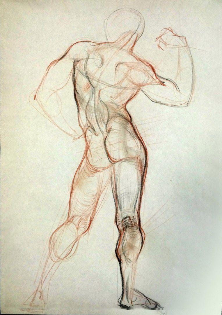 фритюрницу влить анатомия человека картинки рисование пойдёт про