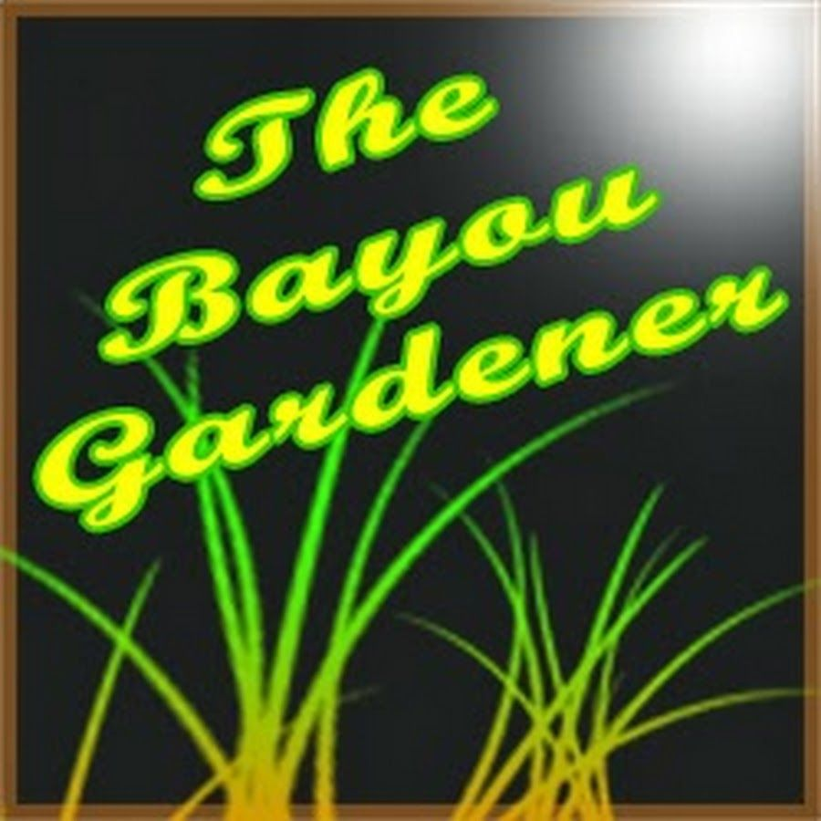 5cfc0c29d9d8ba5f2701e444c16579dc - What Happened To The Bayou Gardener
