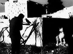 """1 / 10Scanno, 1959© COLLECTION MUSINF2 / 10A Silvia 1© COLLECTION MUSINF3 / 10Paesaggi marchigiani""""La voglia di vivere""""© COLLECTION MUSINF4 / 10Io non ho mani che mi accarezzino il viso, 1961© …"""