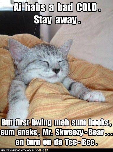 5cfcc259b51da309b844fae27db76750 you do sound sick cat, animal and funny animal,Cute Sick Memes