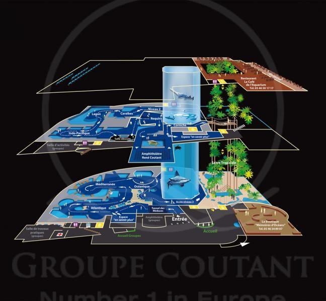 Aquarium Architecture Design Google Search Aquarium Architecture Aquarium Design Water Design