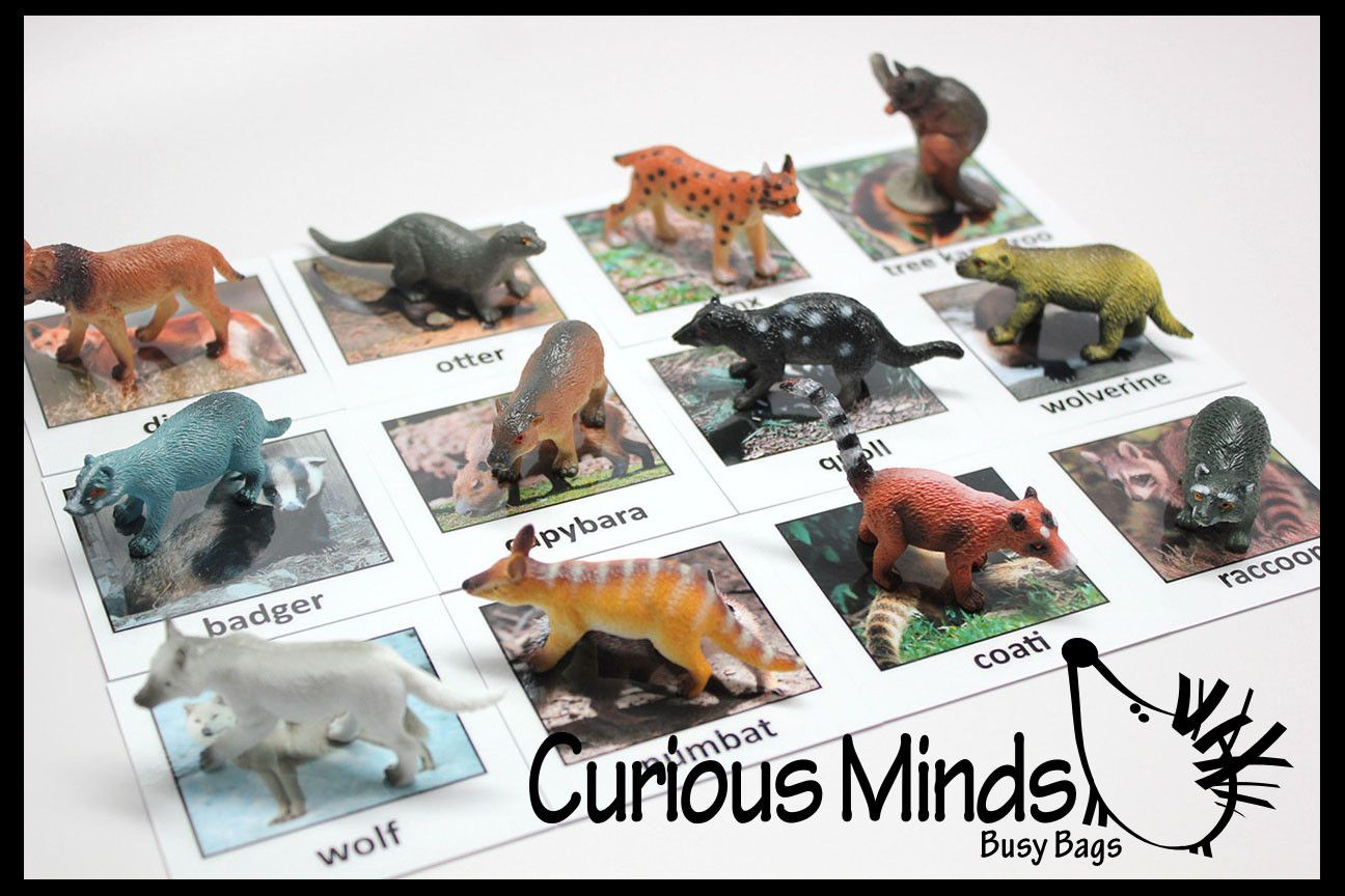 Montessori Animal Match Miniature Animals With Matching Cards