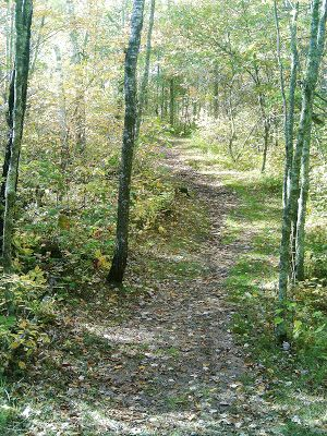 Washburn County regions offer unique trails