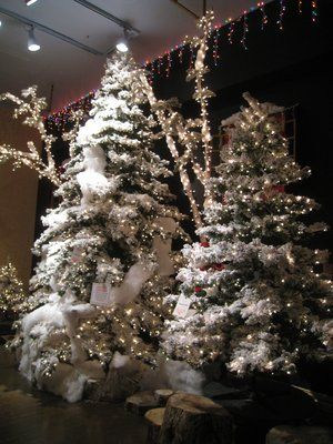 stats floral supply in pasadena ca for christmas decorations and ideas