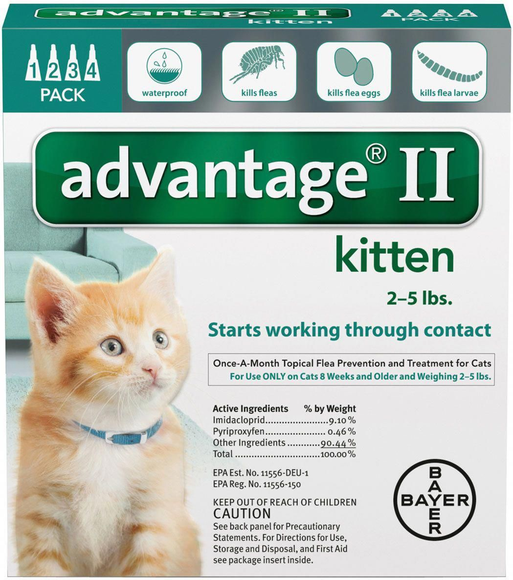 Advantage Ii For Cats 4 Pk Kittens Under 5 Lbs Turquoise Aspcapetinsurance How To Care For Your Pets Cat Fleas Fleas Flea Treatment