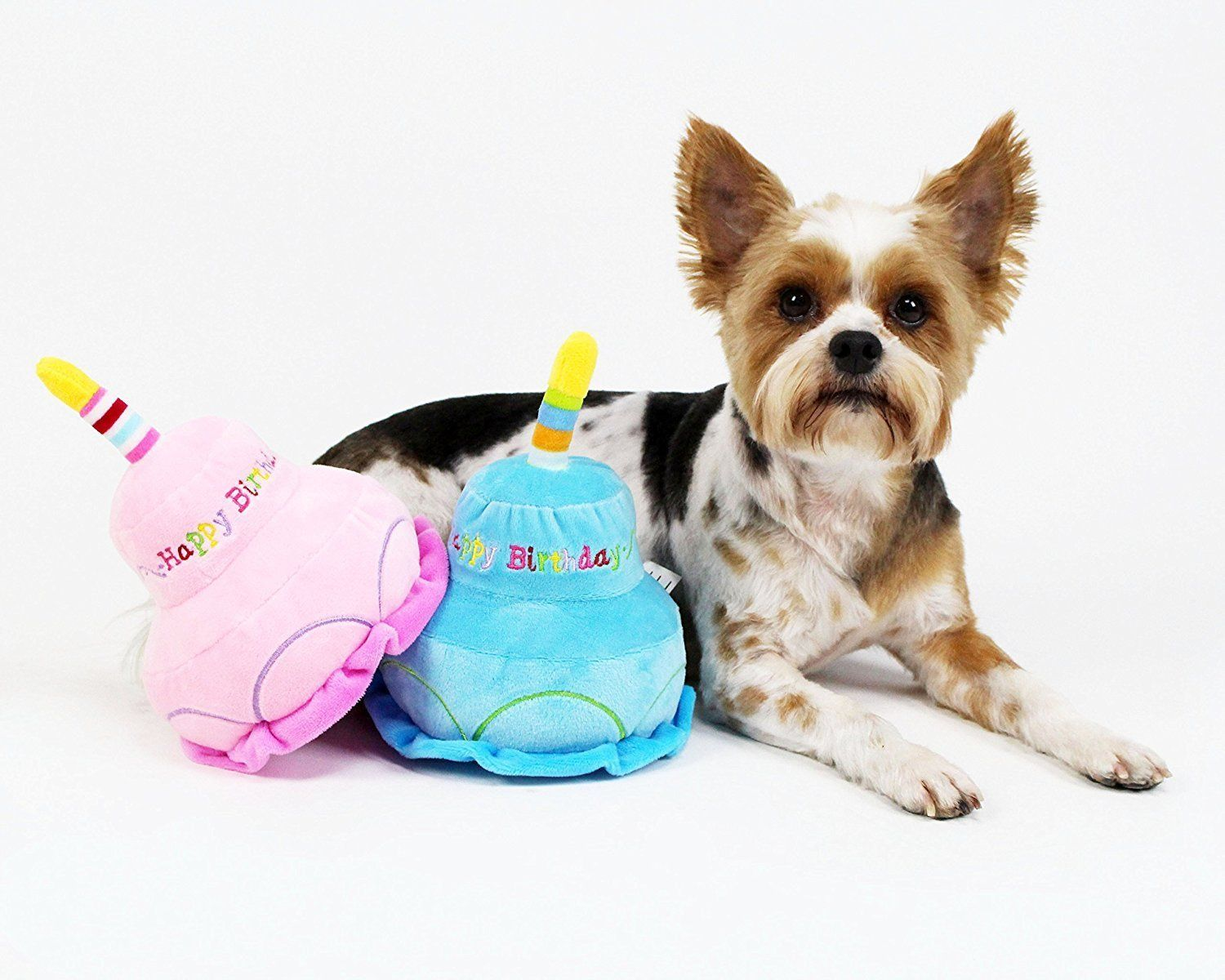 Pet Supplies 2 Layer Birthday Cake Dog Toy By Midlee Pink