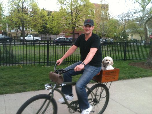 Best Bike Racks For Secure Storage And Transportation Dog Bike