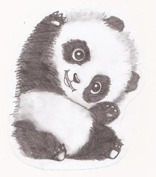 Panda pal cute art and adorable