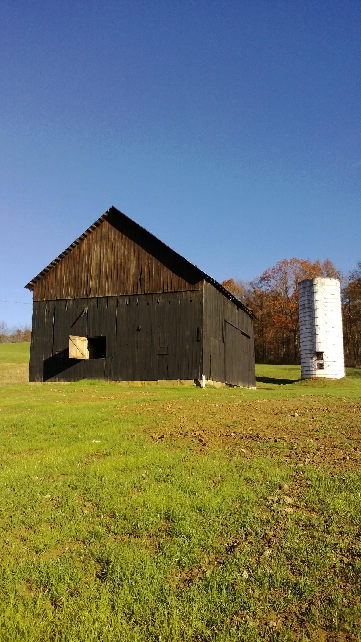 The Grass is coming in nicely.  It will not be long before this barn is employing a lot of people. www.TheMohicanGrandBarn.wordpress.com