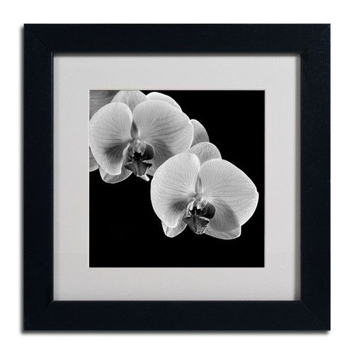 """Found it at Wayfair - """"Orchids"""" by Michael Harrison Framed Photographic Print"""