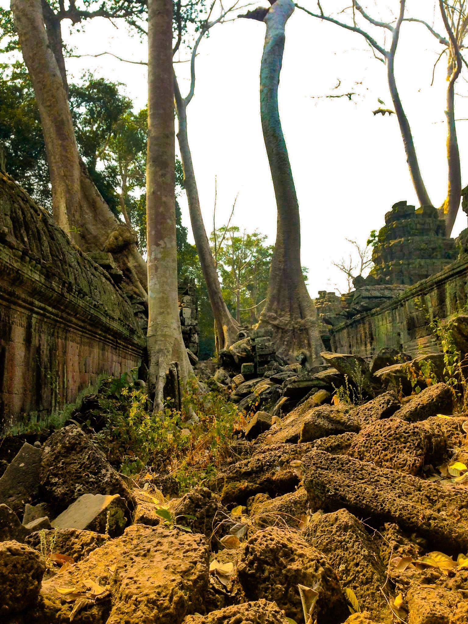 Photograph taken at Angkor Wat, north of Siem Reap, Cambodia.  #VisitHumanity #Photography #AngkorWat #SiemReap #Cambodia
