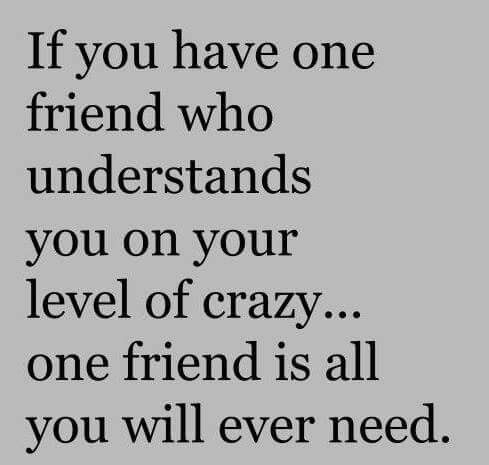 We All Have That One Crazy Friend Who Understands Our Own Craziness Favorite Quotes Best Quotes Understanding