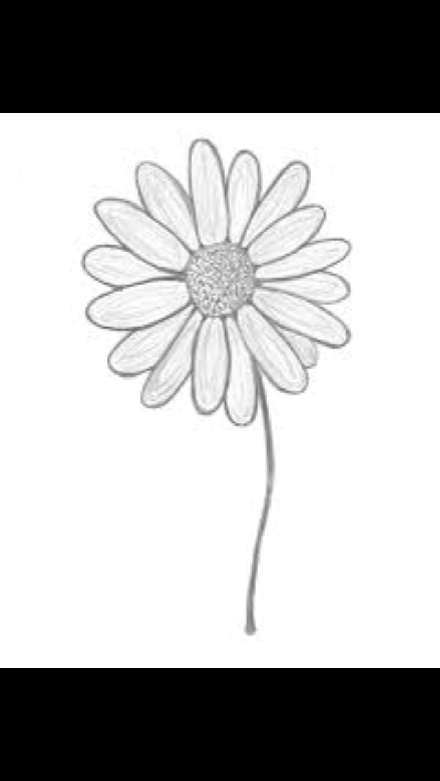 Pin by Brittany Guthro Alstrom on Tattoo Ideas Daisy