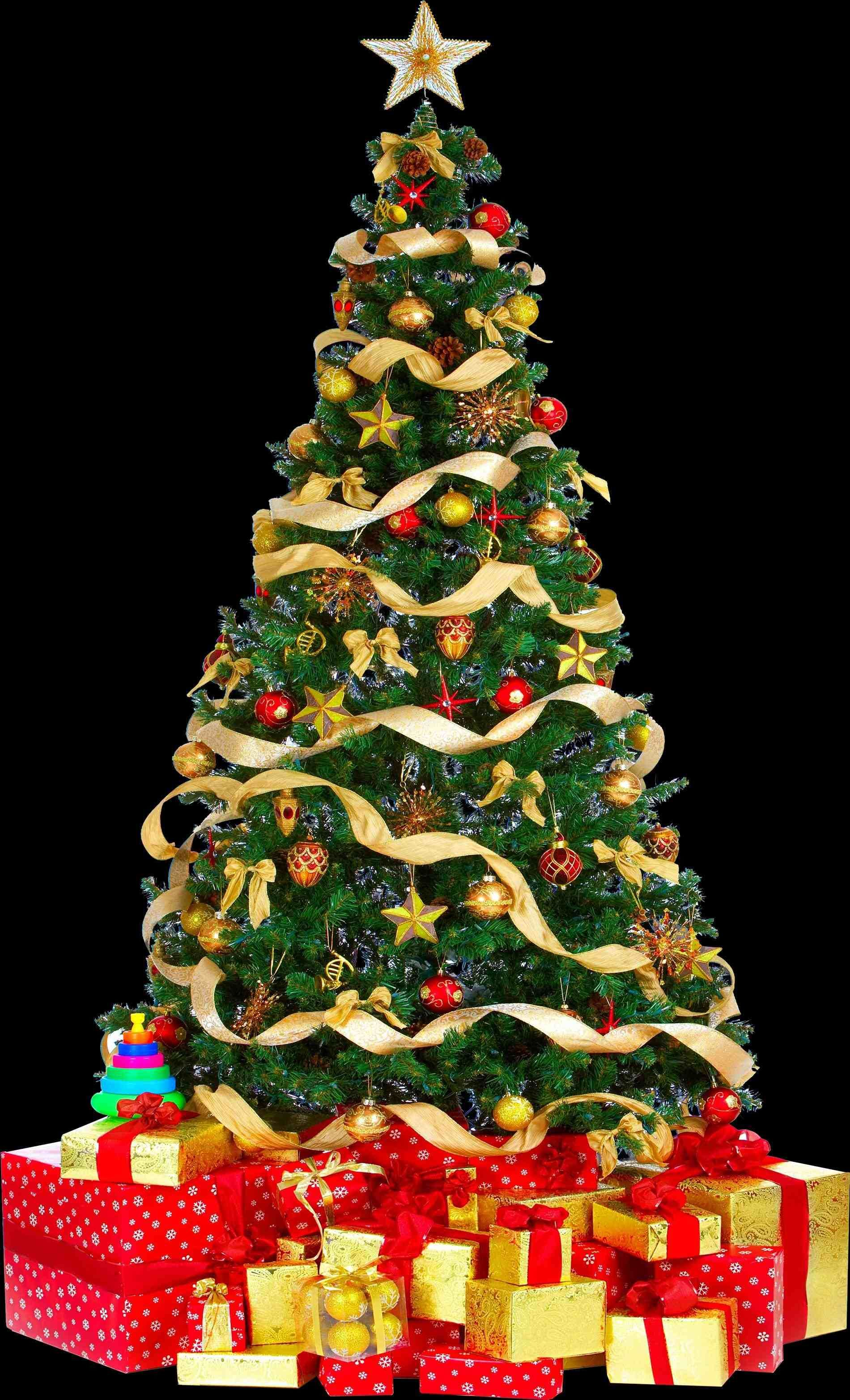 Xmast Site Christmas Tree Green Christmas Tree Christmas Party Invitation Wording