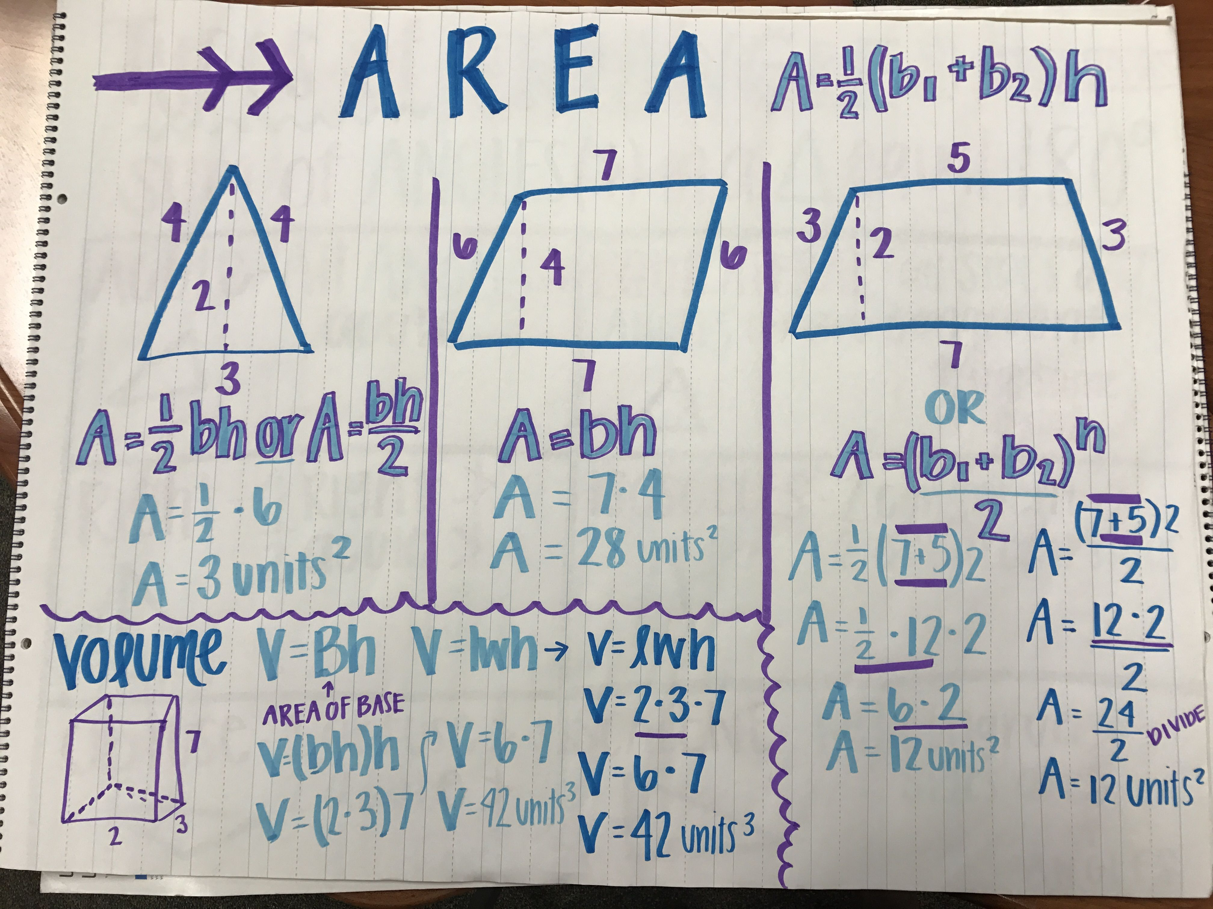how to find the area of a triangle grade 6